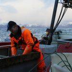 Our Fish denuncia una captura ilegal de 7.500 toneladas de bacalao por barcos británicos
