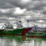 La flota del bonito está en la mar y comienza a tener sus primeras capturas