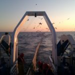 Cepesca respalda a la flota pesquera andaluza en defensa del arrastre