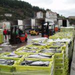 Ondarroa contará con una nueva lonja de pesca