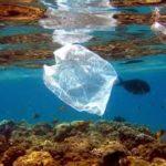 Un proyecto trata de conseguir el reciclaje de plástico marino