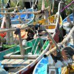 La Agencia de Control de la Pesca establece sus recomendaciones