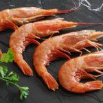Investigadores piden regular el langostino argentino al producirse sobrepesca del reclutamiento