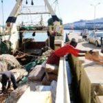 Armadores, científicos y ecologistas contra las flotas chinas