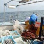 Positivos resultados del plan piloto de coordinación del control de Mediterráneo