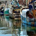 La Audiencia Nacional persigue una carga de pesca ilegal adquirida a los Vidal