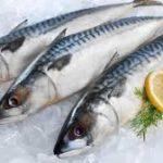 ¿Cómo concienciar al consumidor para consumir pescado?