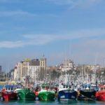 La sardina del Golfo de Vizcaya suspende la certificación MSC por su mal estado