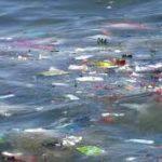 Lluvia de euros para combatir la contaminación de los océanos