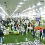 El Consorcio Zona Franca de Vigo afronta un plan para la recuperación de Vigo