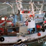La OMC perfilan un acuerdo de pesca internacional sobre subsidios y pesca ilegal