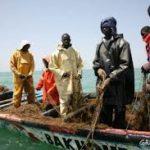 "Greenpeace denuncia la pesca industrial ""sin control"" en Africa"