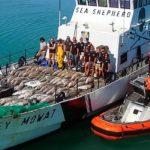 Sea Shepherd una asociación ecologista que se dedica a denunciar barcos