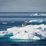 Un acuerdo internacional trata de proteger el Artico de la pesca industrial
