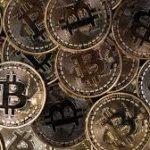 Una empresa pesquera comienza a utilizar el bitcoin
