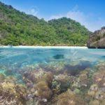 Los mares sin oxígeno se extienden a lo largo del planeta