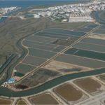 La Consejería de Pesca andaluza da a conocer los beneficiarios de ayudas acuícolas