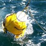 Los sonidos de los barcos modifican el comportamiento del bacalao y egflefino