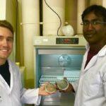 Un laboratorio produce microalgas para transportar vacunas para peces
