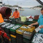 """La comisión mixta hispano-marroquí pide a UE y Marruecos """"urgencia"""" para tramitar el acuerdo pesquero"""