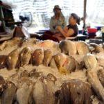 Tailandia progresa en la pesca ilegal, pero no está libre de las amonestaciones de la UE