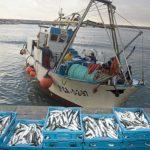 La UE pagará a Marruecos 52 millones al año para que pesquen 128 barcos comunitarios