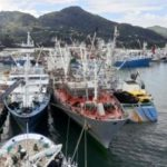 La flota atunera cumple el 80 por ciento de la declaración de Atún de Pesca Responsable AENOR