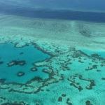 Cuestionan las ayudas de Australia para proteger la barrera de coral