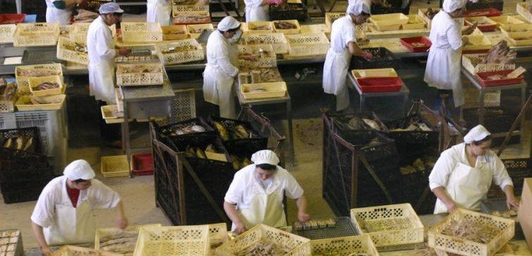 La conservera Cofaco anuncia el despido de 160 trabajadores