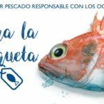 Menos del 2 % de las productos del mar de Canadá carecen de etiqueta