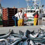 Acopes promocionó el Pescado Azul en la feria Seafood de Bruselas