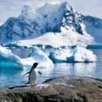 El cambio climático tendrá impacto en la pesca Atlántica nororiental