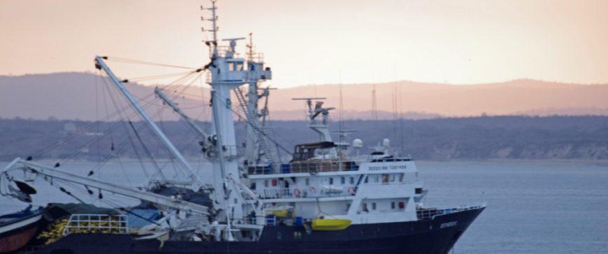 Pesca sostenible con boyas inteligentes y localización vía satélite