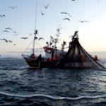 Los profesionales del mar siguen indignados por las nuevas de tarifas para la cotización de accidentes de trabajo