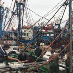 El sector «tranquilo» por poder pescar hasta julio en Marruecos