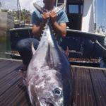 La Guardia Civil sigue con su operativo nacional contra el fraude del atún