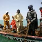 Países y organizaciones se unen para la mejora de las condiciones laborales en la pesca