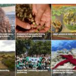 El vídeo de la Red Natura 2000 tratará de concienciar sobre la importancia de biodiversidad