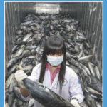 El Parlamento Europeo aprueba elevar aranceles a importaciones objeto de `dumping
