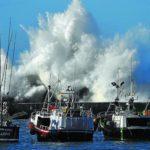 El MAPA fija en 3.000 kilos semanales capturas de jurel para buques en Cantabria