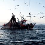 Eroski, la flota atunera y AZTI avanzan en su apuesta por las artes de pesca más sostenibles