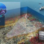 Un nuevo estudio anglosajón carga contra la pesca de arrastre de profundidad