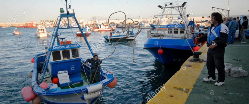 Tarifa pone la alarma sobre las repercusiones del atún rojo sobre el voraz