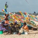 La pesca artesanal de Senegal representa el 83 % de los desembarques