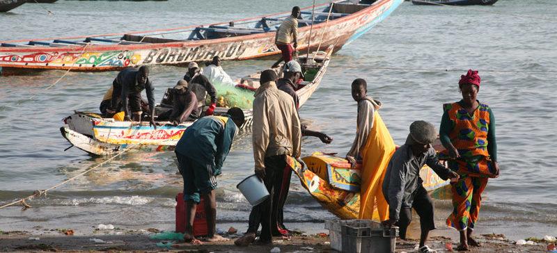 Stop Illegal Fishing y Human Rights trabajarán en la mejora de las actividades laborales