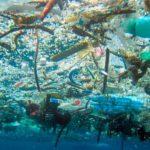 La OMI se ha comprometido  a abordar el problema medioambiental de los plásticos