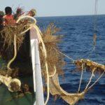 Un 41 % de las pesquerías son sostenibles, pero se pide subir a un 75 %