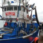 Urge personal cualificado para todos los subsectores pesqueros