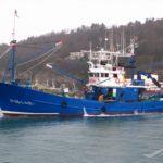 Pesar por la muerte de un pescador cuando descargaba especies en Hondarribia