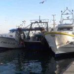 Pesca excesiva y las repercusiones del cambio climático se manifiestan más en el Mediterráneo y en el Mar Negro
